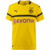 PUMA Borussia Dortmund 18/19 International Fußballtrikot Kinder